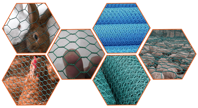 PVC coated hexagonal wire mesh is stored in roll, can be used for rabbit fence, chicken wire or gabion mesh.