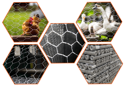 Steel hexagonal wire mesh can be used for chicken wire and poultry fence, is stored in roll.